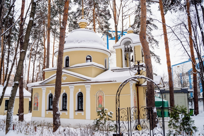 Обитель святой Елисаветы в Покровском-Стрешневе